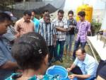 Parasit dan Jamur pada Ikan Air Tawar
