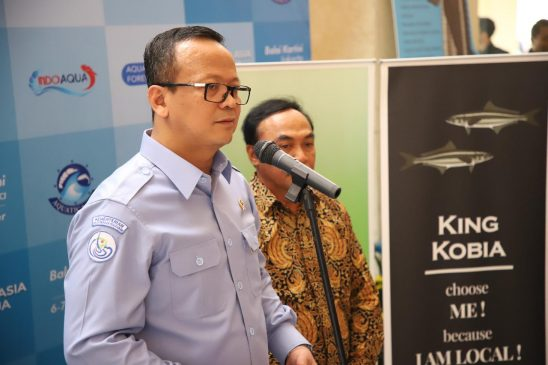 King Cobia, Jadi Alternatif Komoditas Baru